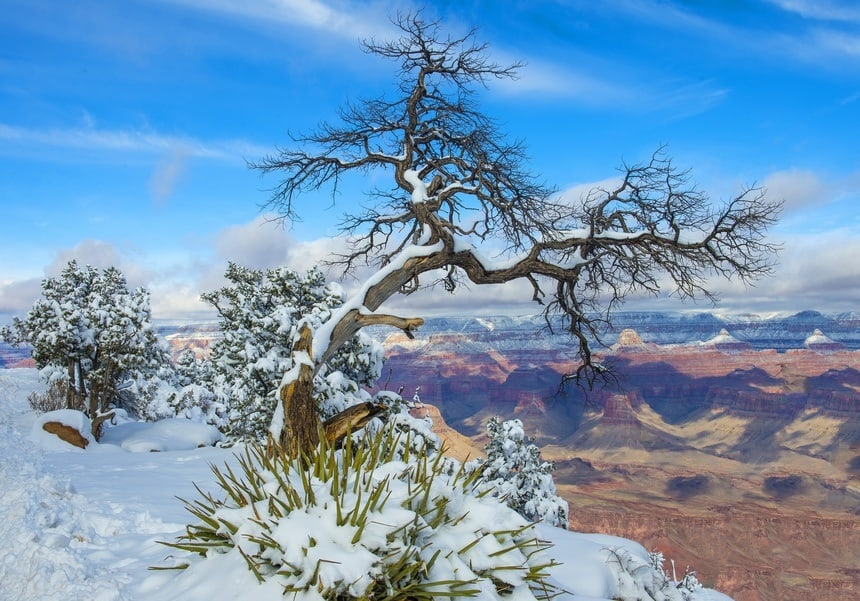 Winter Grand Canyon National Park