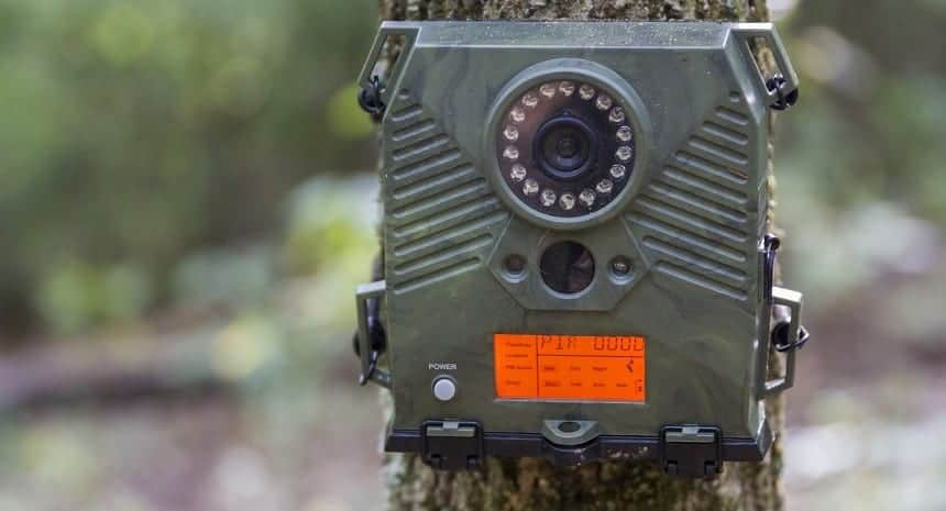 Best Game Camera for Deer Tracking; best trail camera