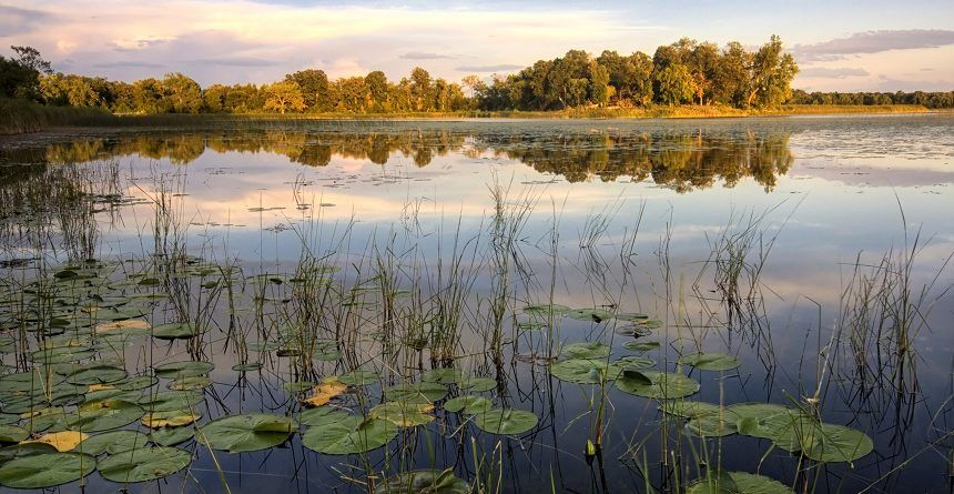 Best Places to Fish in Minnesota