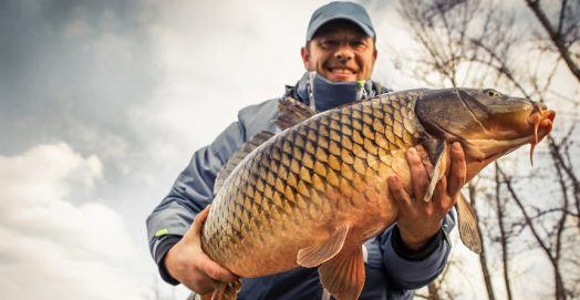Carp Fishing Tips From Top Fisherman