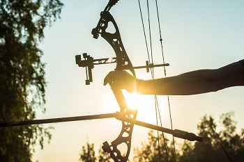 Compound Bow Buying Guide - Best Compound Bow