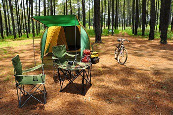 Camping in Pine Forest; best camping chair