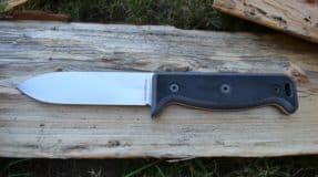 Ontario Blackbird Spear Point