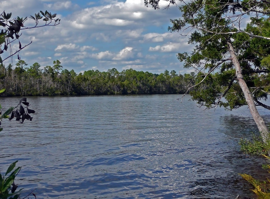 Blackwater River Florida