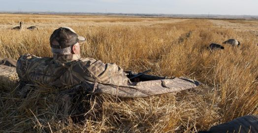 Geese Hunting Tips