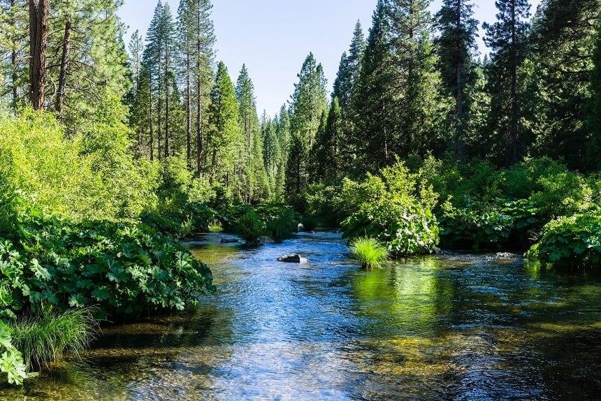 McCloud River California
