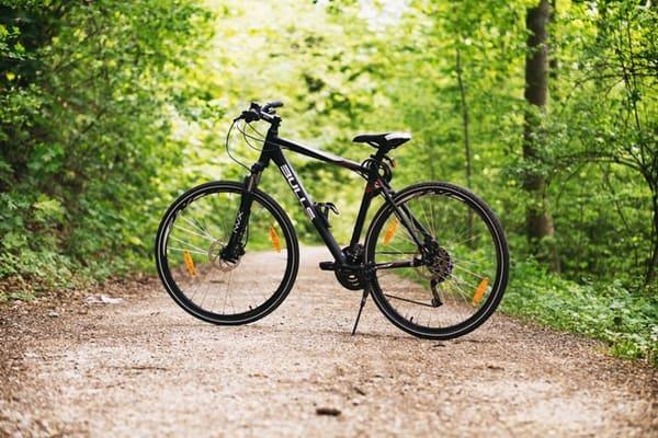 bike parked on a trail